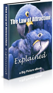 The Law of Attraction eBook