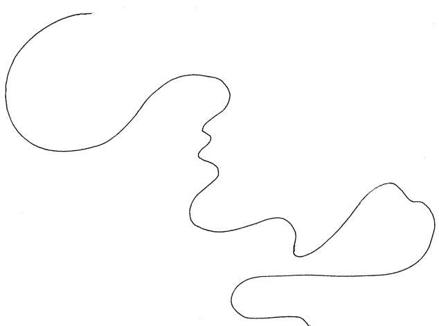 convoluted curve